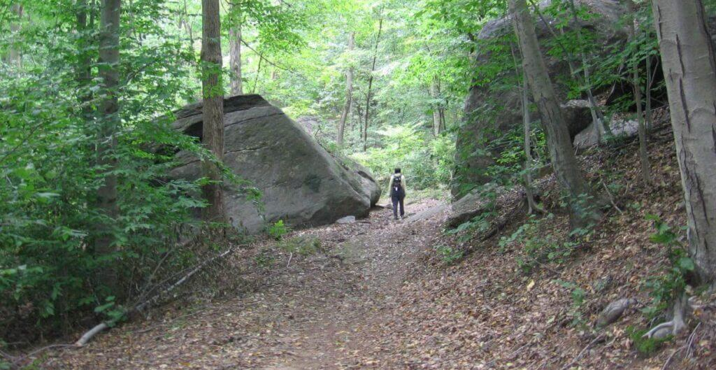 saxon woods 1024x529 New York Summer Hiking and Jogging Tips